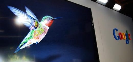 gogole humming bird update